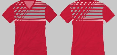 WTEE_LINES1REDGRY_MOCKUP_1000wide